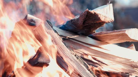 яма : Firewood burns in a barbecue set