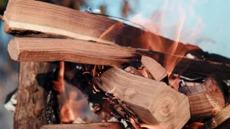 barbecue set : Firewood burns in a barbecue set