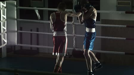contender : silhouette of the two boxers look through a ring