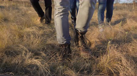four legs : 4K, Close up on feet of unidentifiable people in rugged pants walking through wild grass