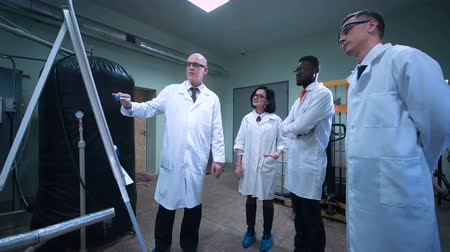 laboratorní plášť : Group of multicultural scientists standing next to whiteboard and listening to the colleague showing them her research project