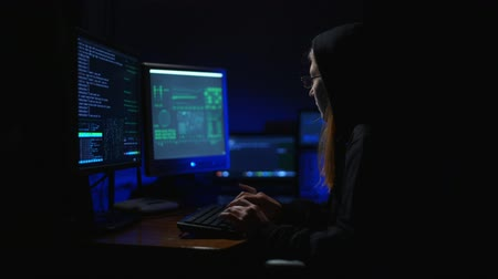 scammer : A Girl Hacker at the Computer