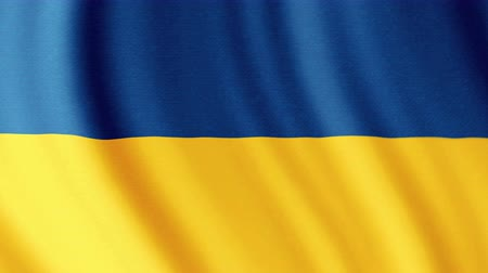 nacionalismo : Ukraine National Flag. 4K seamless loop video