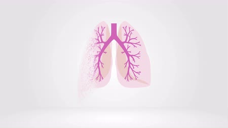 острый : Destruction process of the lungs. Autopsy medical concept. Tuberculosis, Cancer, Acute lower respiratory tract infections, Adult Respiratory Disorder Syndrome, Asthma, COPD, Cystic fibrosis