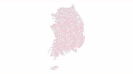 intricacy : South Korea Dotted Map Networking Dot Motion Graphic 4K. The appearance of the map of Korea from the dots. Appearance of points. Light abstract animation