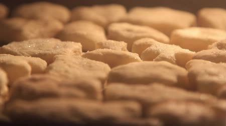 HD timelapse of cookies baking in the oven Wideo