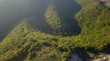 vulkán : Aerial view of forest in the canyon.