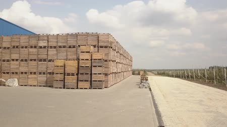 engradado : Aerial photography of a large number of wooden crates. Wooden containers for storing apples. Stock Footage