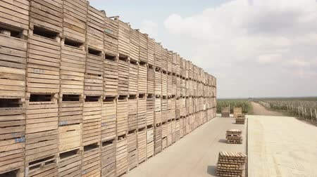 crate : Aerial photography of a large number of wooden crates. Wooden containers for storing apples. Stock Footage