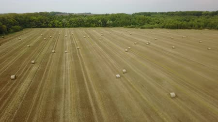 hooibalen : Truss of straw bale harvest harvesting field agriculture farming square autumn fall aerial photo photography