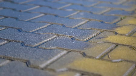 godo : Wet sidewalk in the rain. rain drops fall on the pavement Vídeos