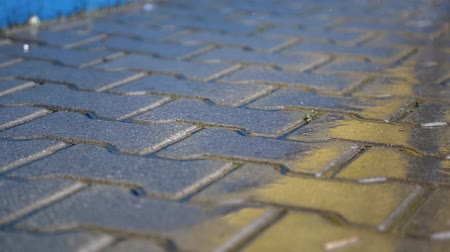 pozzanghera : Wet sidewalk in the rain. rain drops fall on the pavement Filmati Stock