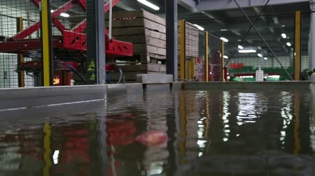 empaque : Automated robot lowers the container of apples into the water. Apples Floating in Water in Packing Warehouse. Red apples are sorted and washed. Archivo de Video