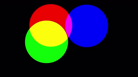 дополнение : RGB circles additive color model. Simple looping animation shows how colors are made Стоковые видеозаписи