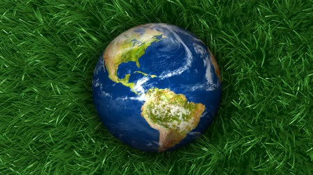zmiany : 3D animation of Earth on green grass that is flowing in the breeze. Seamless looping animation.