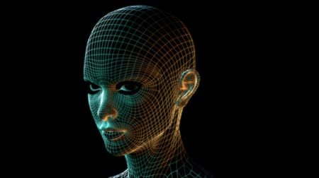 intelligencia : 3D High tech wireframe woman, facehead orbit. Seamless 1080 HD loop.-