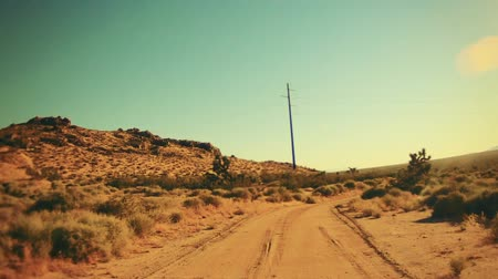 kaktusz : Driving on a dirt road in the desert on a hot summer day. Stock mozgókép