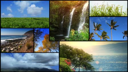 water conservation : Montage of oceans, waterfalls, trees and landscapes. All videos and animations in this montage are available in my portfolio as separate elements. -