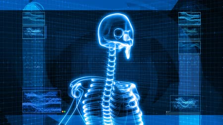 fizik : Seamless looping video animation of X-Ray of Human skeleton on high tech background (HD).-