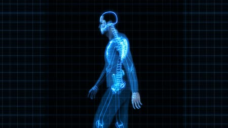 omuzlar : X-Ray of a animated 3D man carrying a concealed handgun. Seamless looping video animation.- Stok Video