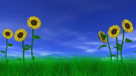 dmuchawiec : Sunflowers gently swaying in the breeze with blue sky, clouds and grass. 3D animation, seamless looping animation.-