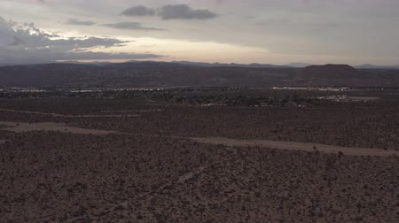 konie : Aerial View of the sunset in the desert flying over trees and shrubs. Wideo