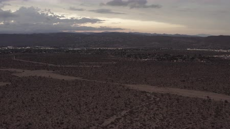 joshua : Aerial View of the sunset in the desert flying over trees and shrubs. Stock Footage