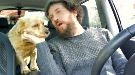 adam : Happy man in love with dog barking in car