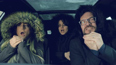 zmrazit : Unhappy people feeling very cold in car Dostupné videozáznamy