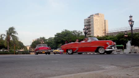 kübalı : Vintage Cars in convoy in La Havana Cuba Stok Video