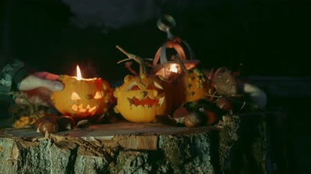 dynia : Hand places a Halloween pumpkin over a tree trunk with pumpkins decoration Wideo