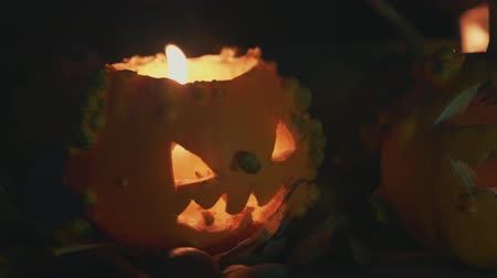 dynia : Halloween pumpkin over a tree trunk with pumpkins decoration Wideo
