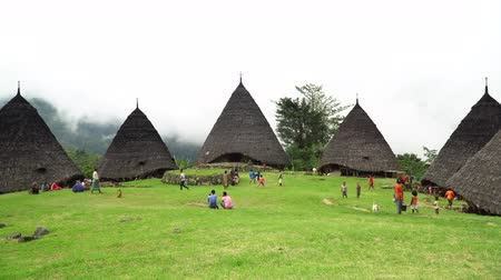 Флорес : FLORES, INDONESIA - DECEMBER 14, 2017: Local Tribe on their daily activity at Wae Rebo Village. Wae Rebo is the famous Manggarais traditional villages, consist of 7 custom house named as Mbaru Niang