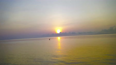 east timor : Hyperlapse of Ocean and coastal landscapes during sunrise at Lembata Island, Indonesia Stock Footage