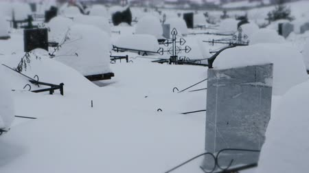 buried : Snow storm in a cemetery in winter.