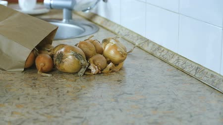 rind : Onion is poured from a paper bag on the kitchen table. Slow motion.
