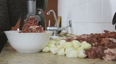 sirloin : Close-up womens hands putting beef and pork meat and onion through mincer at home. Front wiev. Stock Footage