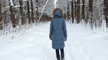 kar fırtınası : Tracking a woman in the winter forest, the camera shakes hard. Back view.