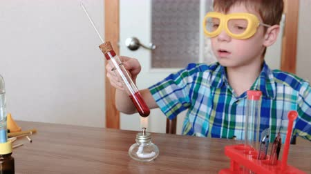 diligence : Experiments on chemistry at home. Boy heats the test tube with red liquid on burning alcohol lamp. The liquid boils.