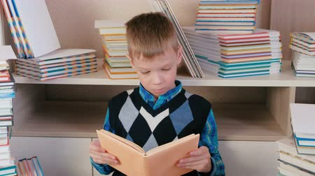 ansiklopedi : Seven-year-old boy attentively reads the book sitting among books.