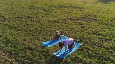 babycare : Mom with her little daughter stretching on the mat on the field in warm summer day. Aerial panoramic view.
