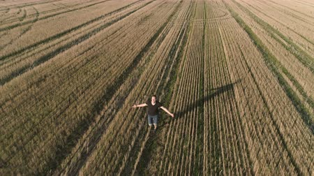 horizont : Young successful happy man running on the field, arms outstretched. Aerial panoramic view.