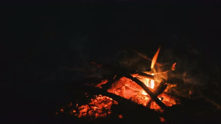 костра : Burning bonfire of dry branches in the forest close-up at night.