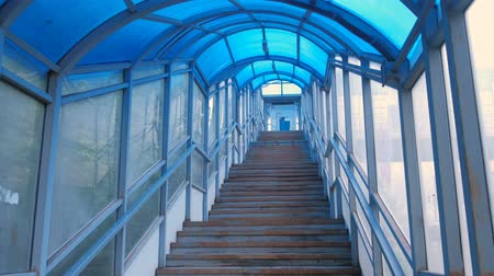 stair : Stairs of elevated pedestrian crossing from the inside. Safe passage across the road.
