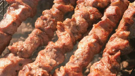 обед : Appetizing juicy pork barbecue is roasted on skewers on top of charcoal grill. Close-up meat pieces. Стоковые видеозаписи
