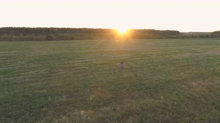 açıklık : Unrecognizable woman walking on the field at sunset arms outstretched. Stok Video