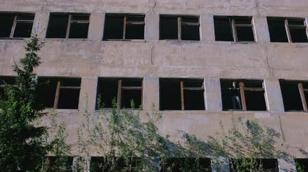 aftermath : Woman standing on window of destroyed multi-storey building with many broken windows.