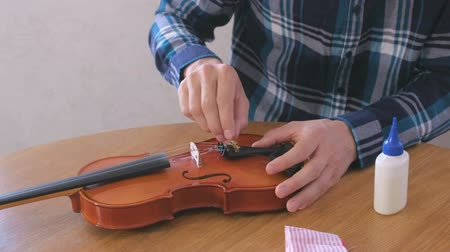 instrument maker : Young man in plaid shirt is repairing a violin sitting at the table.
