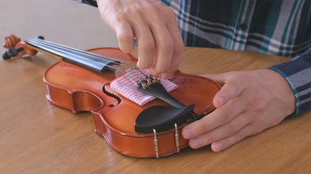 instrument maker : Close-up hands of young man in plaid shirt is repairing a violin sitting at the table. Tightens the bolts into place. Stock Footage