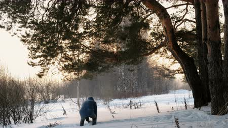 śnieżka : Man throws up snow in the winter forest at sunset. Back view. Wideo